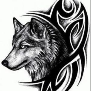 Photo de profil de black_moon